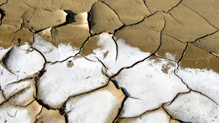 2009 World Water Day: Effects of Water Scarcity. UN Photo/Martine Perret