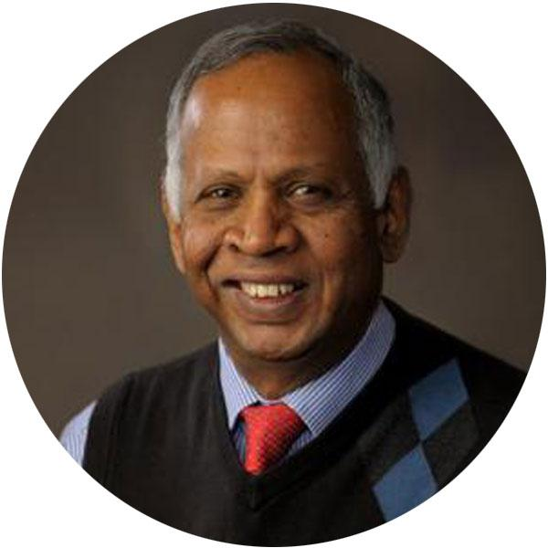 Photo of Prof. Murugesu Sivapalan